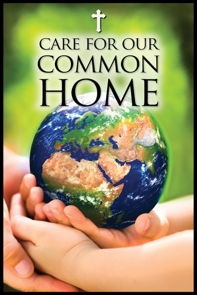 16-17_Care_For_Our_Common_Home_CISVA_Logo
